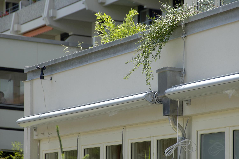 Pflegewohnbereich Senioren-Wohnstift Dachbegrünung